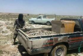 ناقوس مرگ ماهیان در تالاب هامون/ صیادان دست به کار شدند